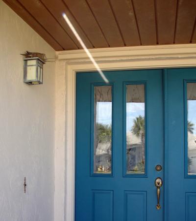 Dove_front_door