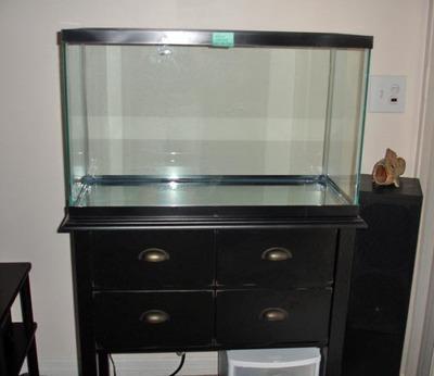 Fish_tank_7