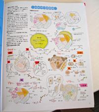 Japan_mag_page_2